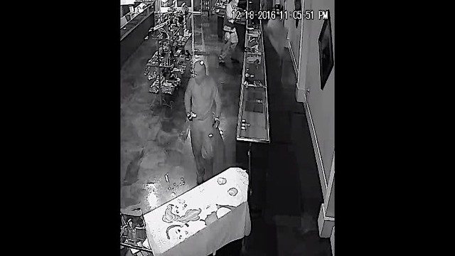 Two Possible Ninjas Rob Crestview Jewelry Store