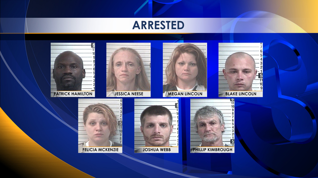 Seven Arrested in BCSO Drug Bust