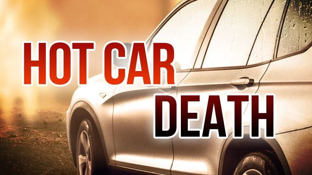 Baby Dead After Being Left in Car for Eight Hours