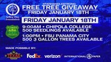 Free Tree Giveaway for Florida Arbor Day