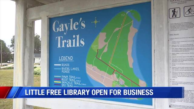 Little Free Library World Map.Little Library