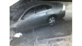 Panama City Police ask for public's help in finding men involved in car burglaries